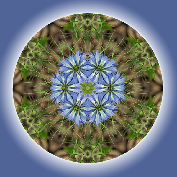 Be (digital mandala from photograph)